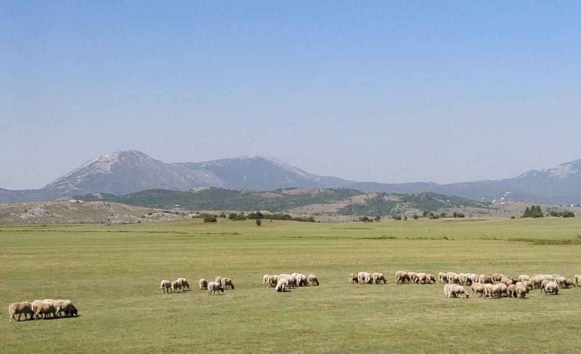 Paysage de Mostar à Podgorica
